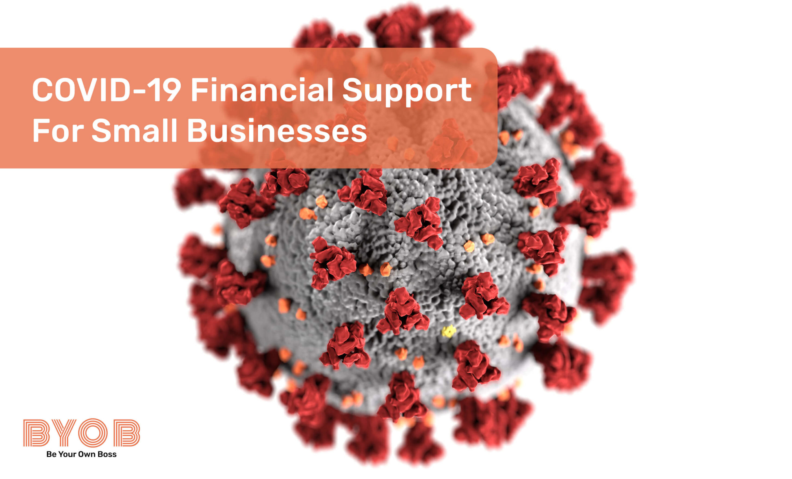 Financial support options for small businesses during COVID-19